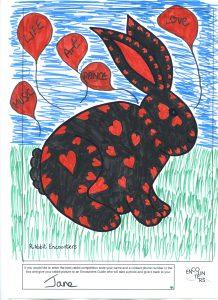 Rabbit 524