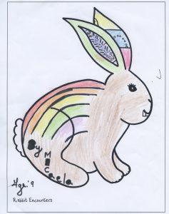 Rabbit 527