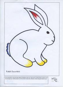 Rabbit 528