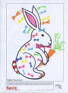 Rabbit 529