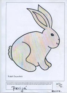 Rabbit 530