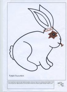 Rabbit 533