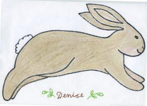 Rabbit 535