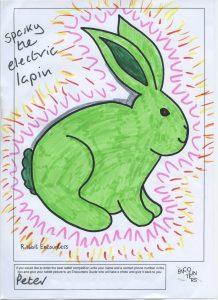 Rabbit 536