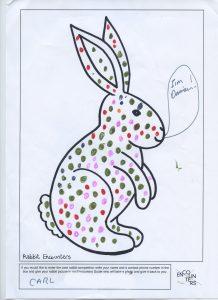 Rabbit 537