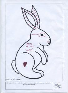 Rabbit 539