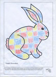 Rabbit 546